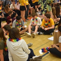 Freshmen and their Link Crew leader introduce each other
